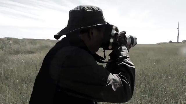为拍一张照片他花费两个小时一寸一寸蹭到鸟的身旁
