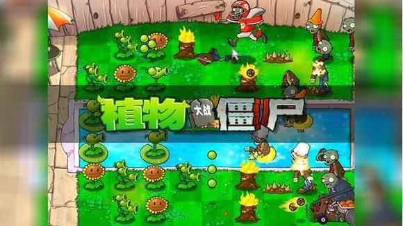张小6解说 单机游戏视频 植物大战僵尸 第八关