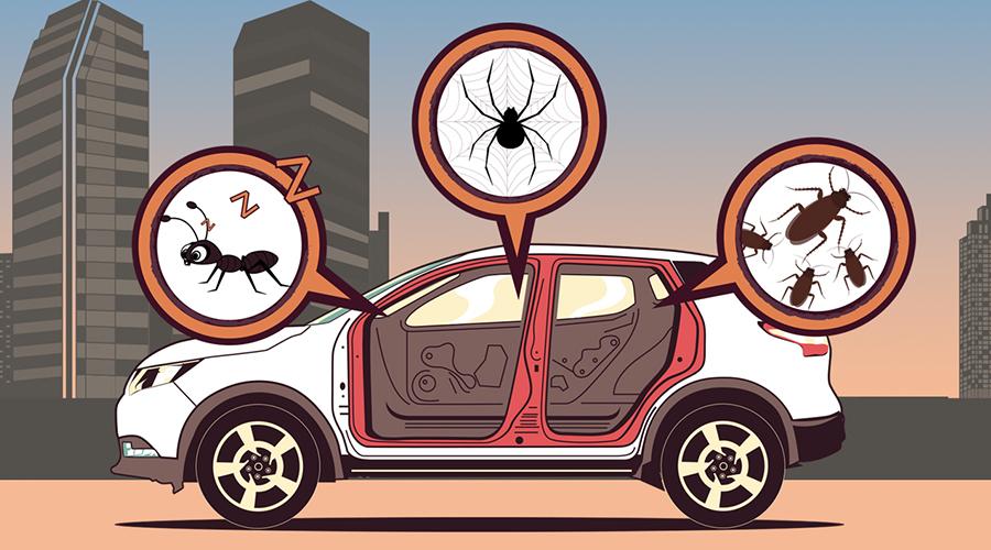 """车里有座""""疯狂动物城""""该怎么办?这几招彻底解决你的烦恼"""