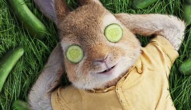 【比得兔】萌物变身时尚icon 2018春夏流行趋势一网打尽
