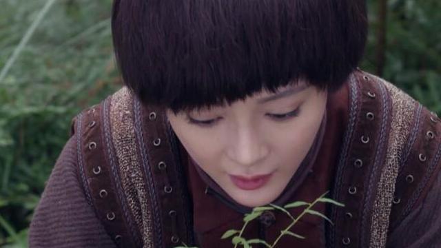 【战昆仑】第37集预告-韦纯山上冒险采草药