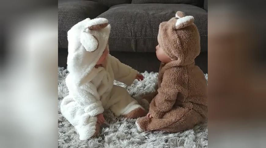 好可爱的一对双胞胎小熊宝宝,面对面咿咿呀呀地聊天,被萌翻了