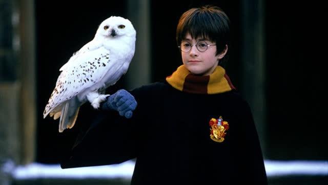 【哈利·波特与魔法石】定档8月14日 重回魔法梦的起点