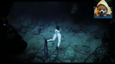 报告, 东海发现一条美人鱼, 要不要抓起来?