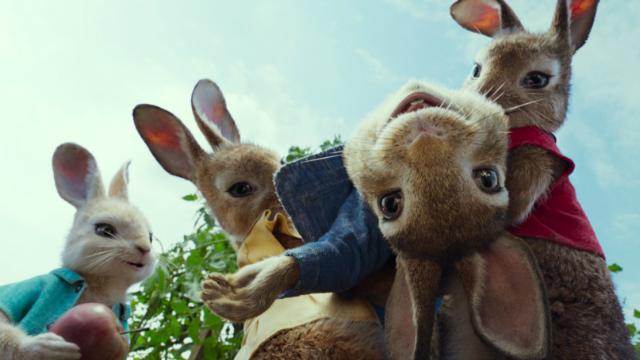 """【比得兔】兔子家族忙""""偷菜"""" 有勇有谋胆力冲天"""