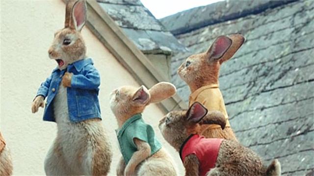 【比得兔】兔界大佬颠覆形象搞怪搏出位