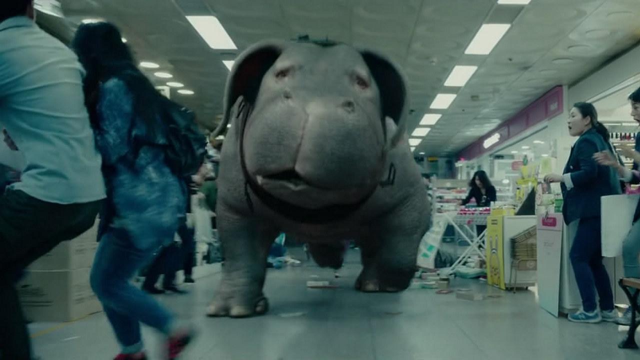 转基因科幻猪的坎坷遭遇,阿斗带你速看美韩合拍电影《玉子》