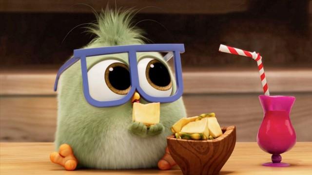 【憤怒的小鳥2】寶寶上班日