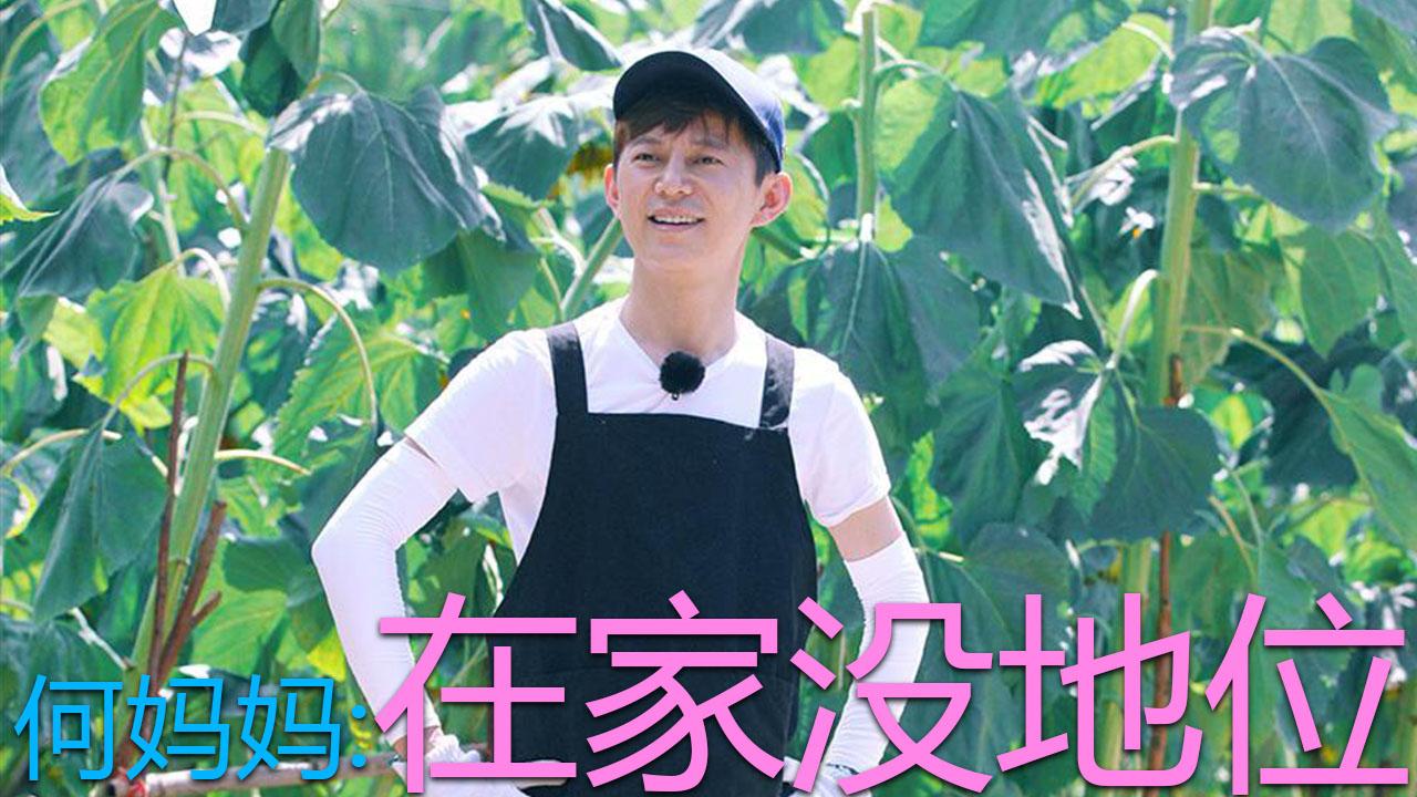 向往的生活第2季开播,黄磊何炅花式吐槽导演组