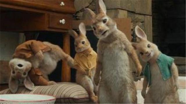 【比得兔】兔子家族高清写真 搞怪片段鲜萌来袭
