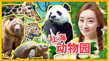 爱丽的上海动物园之行 | 爱丽和故事 EllieAndStory
