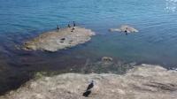 70秒航拍带你领略扎陵湖美景